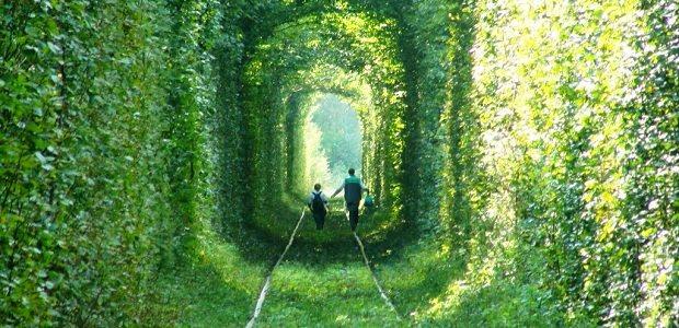 【愛のトンネル】ウクライナにある緑に囲まれたロマンチックなトンネル